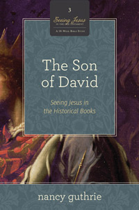 SON OF DAVID: SEEING JESUS IN THE HISTORICAL BOOKS - BOOK