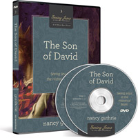 SON OF DAVID: DVD SEEING JESUS IN THE HISTORICAL BOOKS - DVD